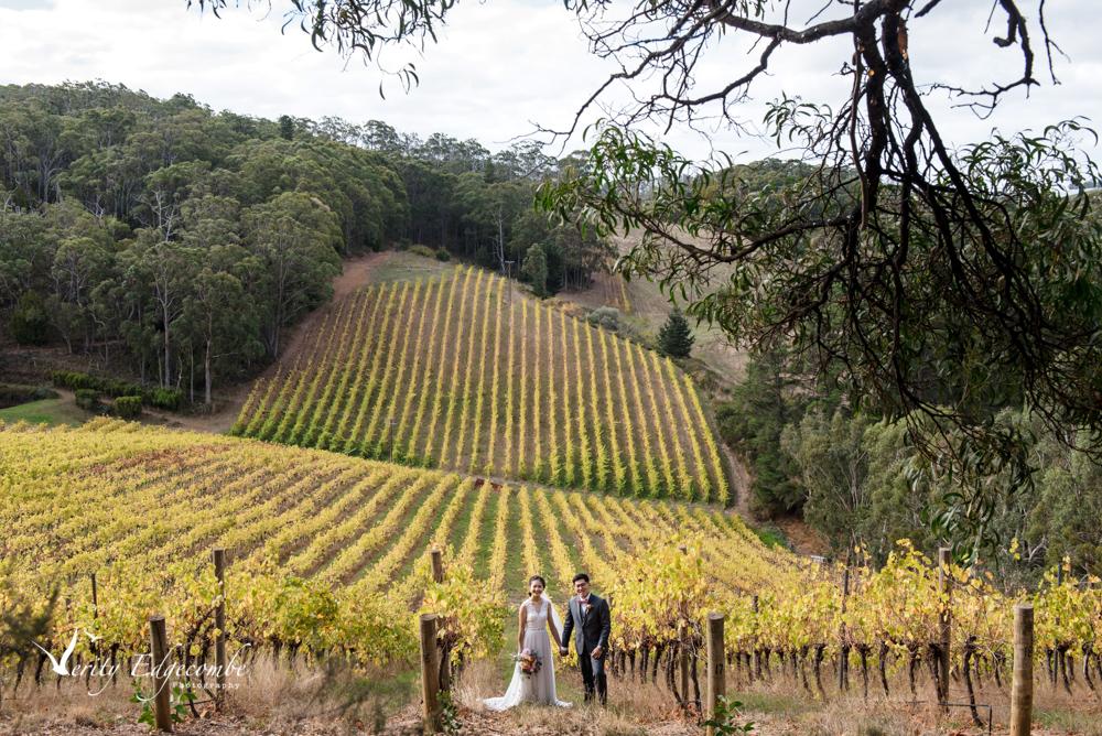 Mt Lofty Ranges Vineyard Wedding